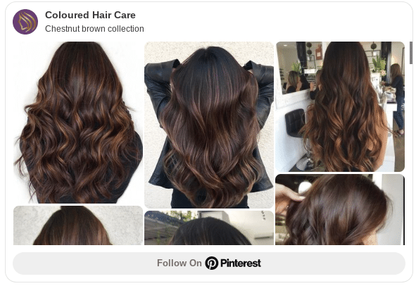 chestnut hair color ideas pinterest
