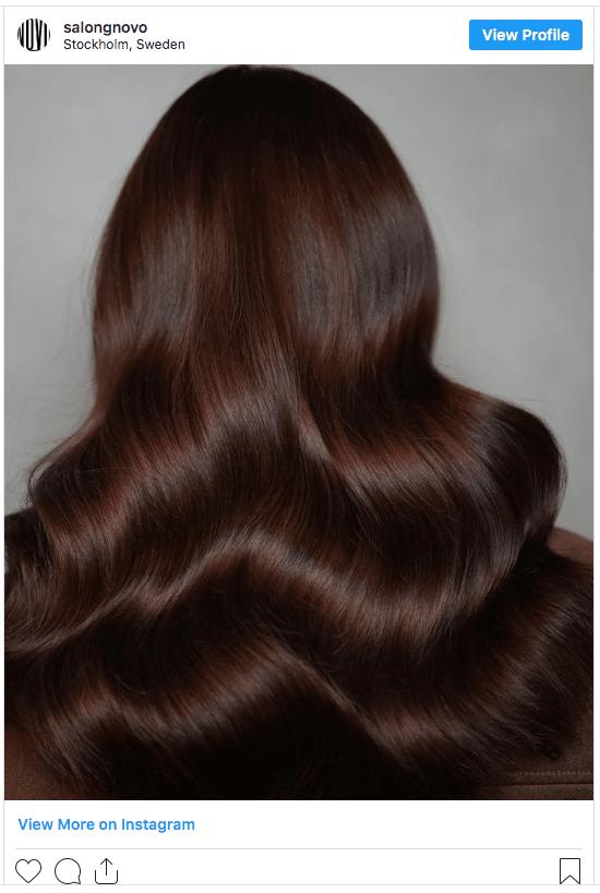 chocolate brown hair instagram