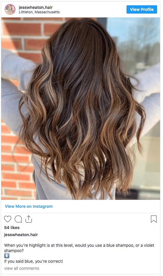 blue shampoo highlight hair color instagram post