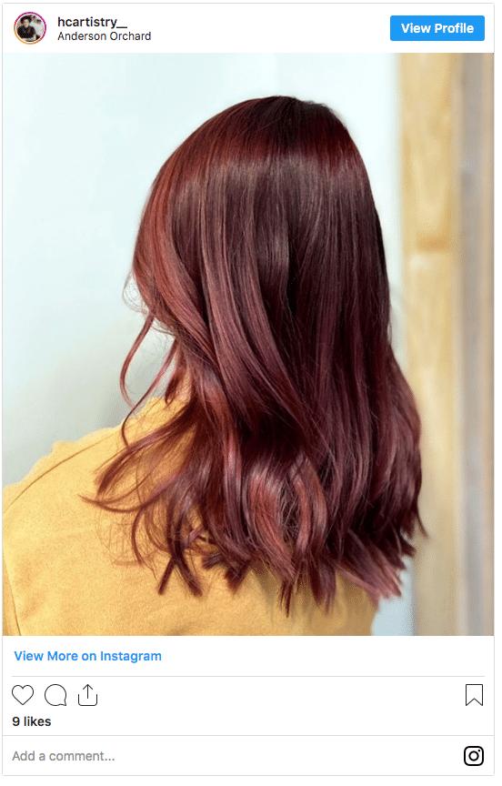 fall hair color auburn instagram post