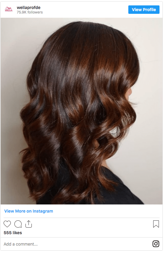 Chesnut brown instagram autumn hair color